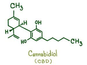 What is CBD? CBD atoms