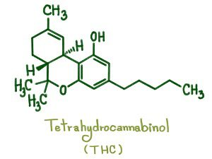 What is THC? - THC Atoms