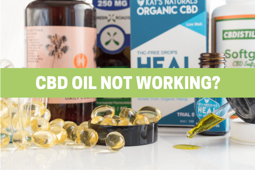 CBD Oil Not Working?