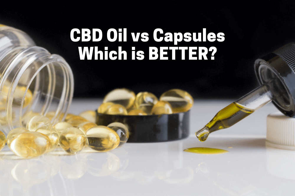 CBD oil vs Capsules: Which is Better?