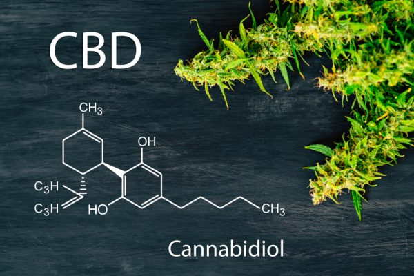 CBD in the UK